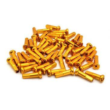 PACK DE TETES DE RAYONS RANT GOLD (X40)